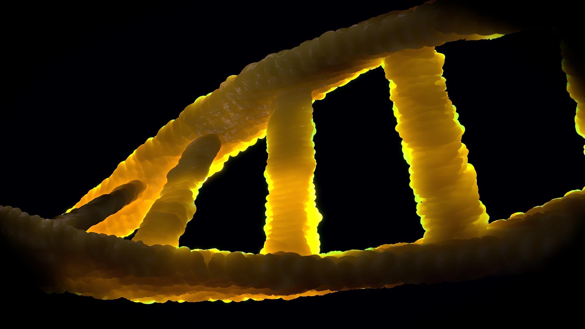 בדיקת שבב גנטי CMA