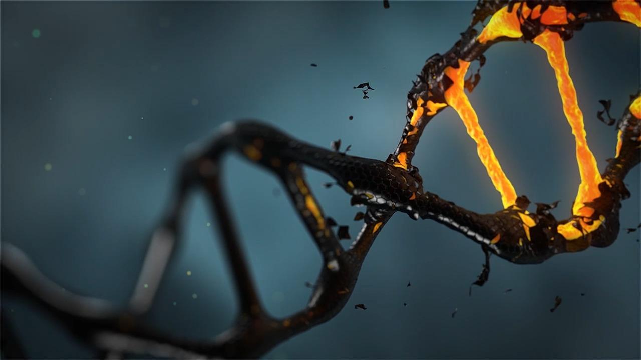 שבב גנטי: בדיקה שאסור לוותר עליה
