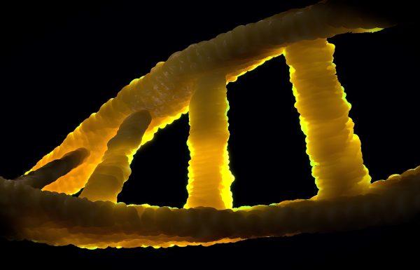 לא יכול להיות שלא יסבירו לך על צ'יפ גנטי!