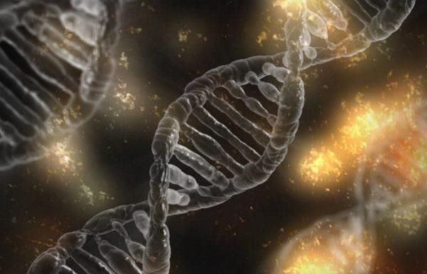 אפיגנטיקה: שינויים תורשתיים ללא שינוי רצף ה-DNA