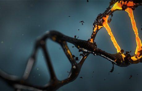 שבב גנטי בהריון: בדיקת חובה!